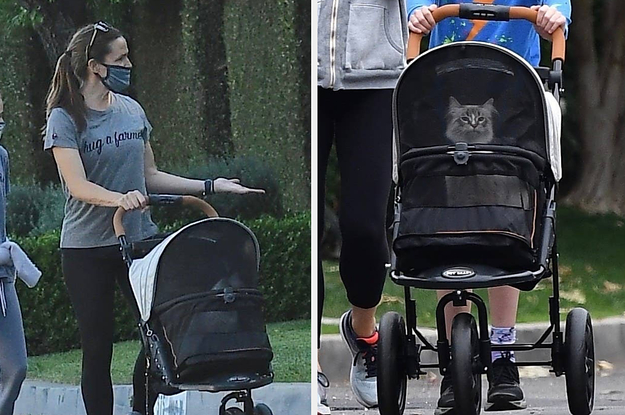 Jennifer Garner Pushing Her Cat Round In A Stroller Whereas Taking A Stroll