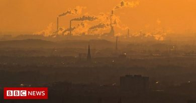 Local weather change: UN emissions hole report a 'thundering get up name'
